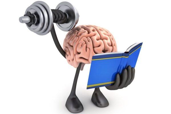 Jak práce realitního makléře přispěje k rozvoji vašeho intelektu